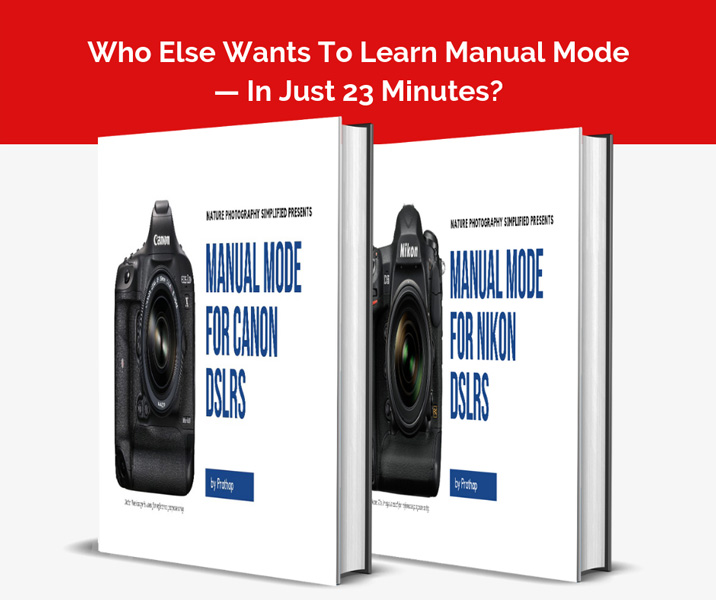 Free ebook on Manual Mode for Canon and Nikon DSLR cameras by Prathap