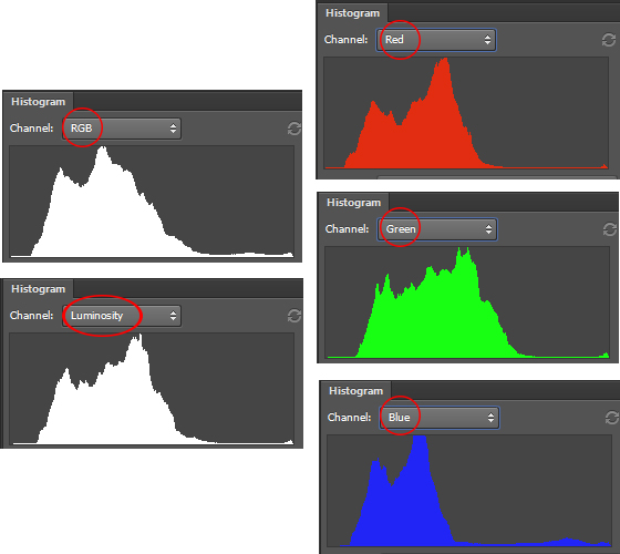 Histogram representing RGB, luminosity, Red, Green and Blue colors