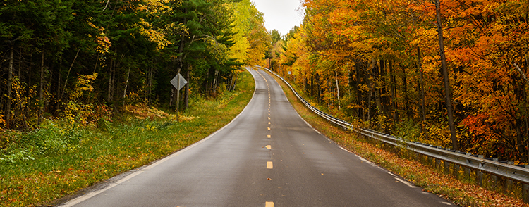 Leading Line combined with Rule of Thirds Photography Composition Technique. Upper Peninsula. Autumn Road to Lake of Clouds.