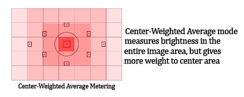 Canon and Nikon DSLR Camera Metering Modes. Image shows Center Weighted Average Metering Mode.