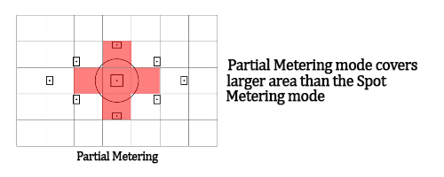 Canon and Nikon DSLR Camera Metering Modes. Image shows Partial Metering Mode.