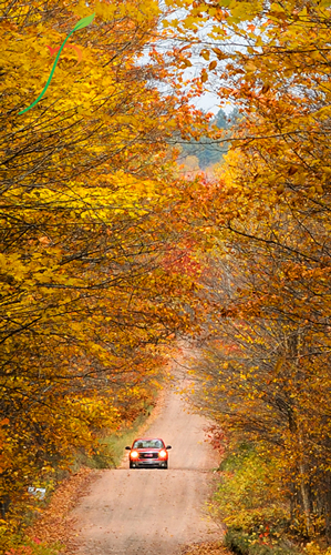 Nature Photography Simplified. Understanding Exposure. Deep Depth of Field. Autumn road to Agate Falls in Upper Peninsula.