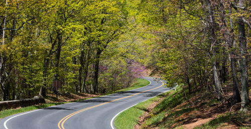 Nature Photography Simplified. Photography Composition Techniques - Elements of Design - Lines. Article and Photography by Prathap.  Beautiful Motor Drive in Skyline Drive, Shenandoah National Park, West Virginia.