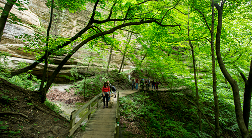 Nature Photography Simplified. Photography Composition Techniques - Elements of Design - Lines. Article and Photography by Prathap.  Boardwalk to Lasalle Canyon in Starved Rock State Park, IL.