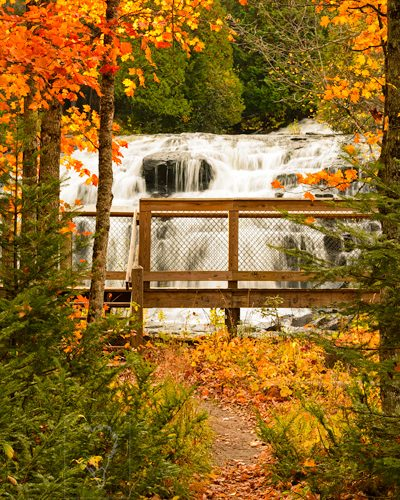 Photo Of The Day. Best Nature Photos. Bond Falls In Peak Autumn Colors Fall Foliage In Upper Peninsula, Michigan, USA . Nature, Wildlife, Bird, And Landscape Photography By Prathap.