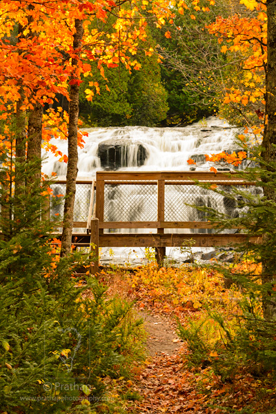 Best Nature Photos. Bond Falls in Peak Autumn Colors Fall Foliage in Upper Peninsula, Michigan, USA . Nature, Wildlife, Bird, and Landscape Photography by Prathap.