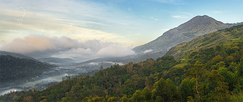Best Nature Photos. Amazing sunrise at The wind munnar resort in Munnar, Kerala, India. Landscape PHotography. Nature, Wildlife, Bird, and Landscape Photography by Prathap.