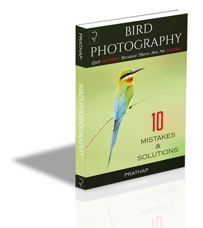 Free Book or eBook on Bird Photography for beginners. Best Bird Photography tips for beginners. eBook by Prathap. Nature Photography Simplified.