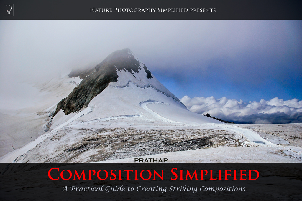 Best eBook or Book or e-learning course for photography composition techniques. Professional photography compositions tips. Behind the scenes look at striking and best compositions. Prathap Photography. Photography eBooks or Books or Courses.