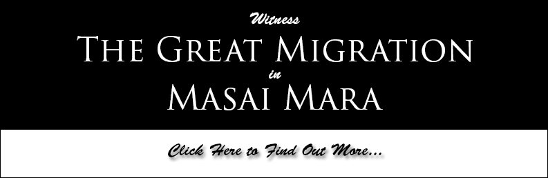 Photography Trip or Workshop in Masai Mara, Kenya, to witness the Great Migration. African Safari in Masai Mara by Prathap. Nature PHotography Simplified.