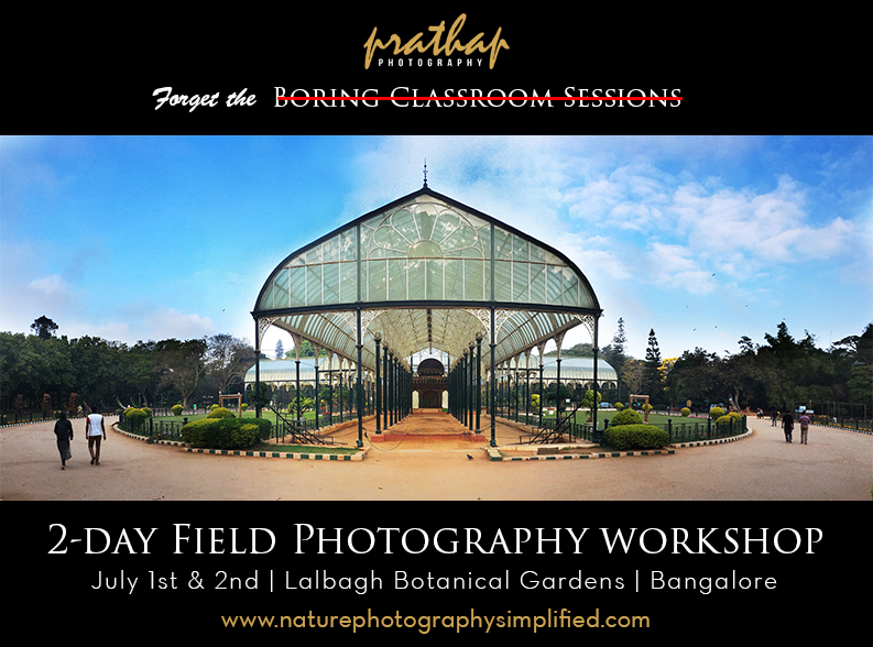 2-day photography workshop in the field for beginner and amatuer photographers and DSLR users in Bangalore. Photography workshops in Bangalore or Bengaluru by Prathap.