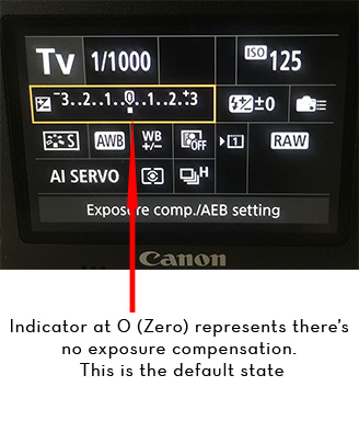 Exposure Compensation Technique. How to Fix the Underexposure or Overexposure in the Field? Or, How to do Exposure Compensation?