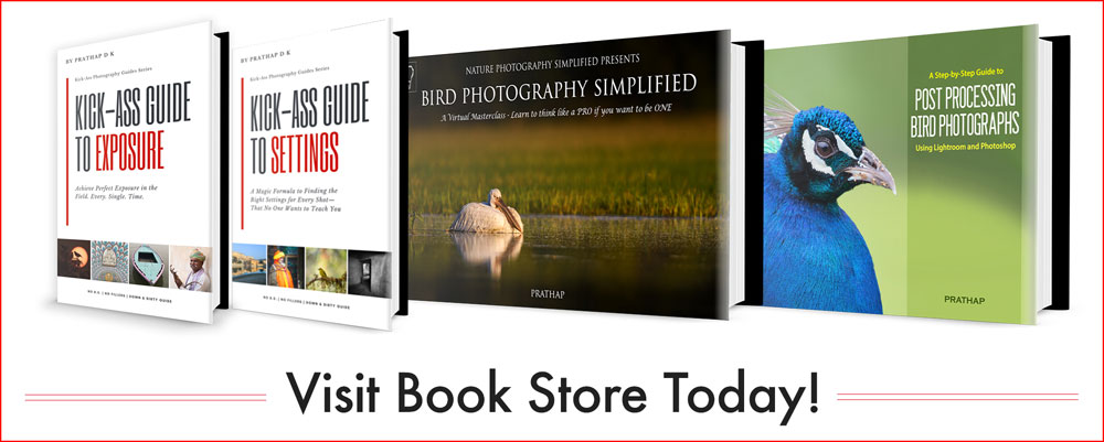 Books eBooks on Bird Photography Tips and Techniques Settings and Exposure by Prathap D K