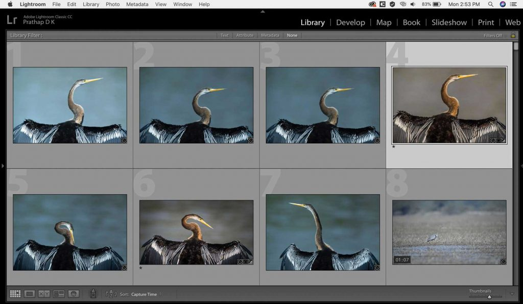 Post-processing tips and techniques for Nature, Wildlife, Landscape photographers. Folder Structure and Image Culling by Prathap D K. Nature Photography Simplified.
