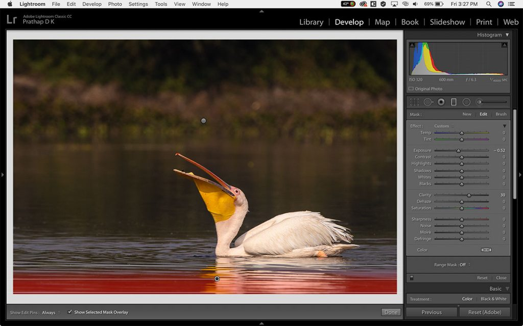 Adobe Lightroom CC Post-Processing tips & techniques for Bird Photographers by Prathap D K