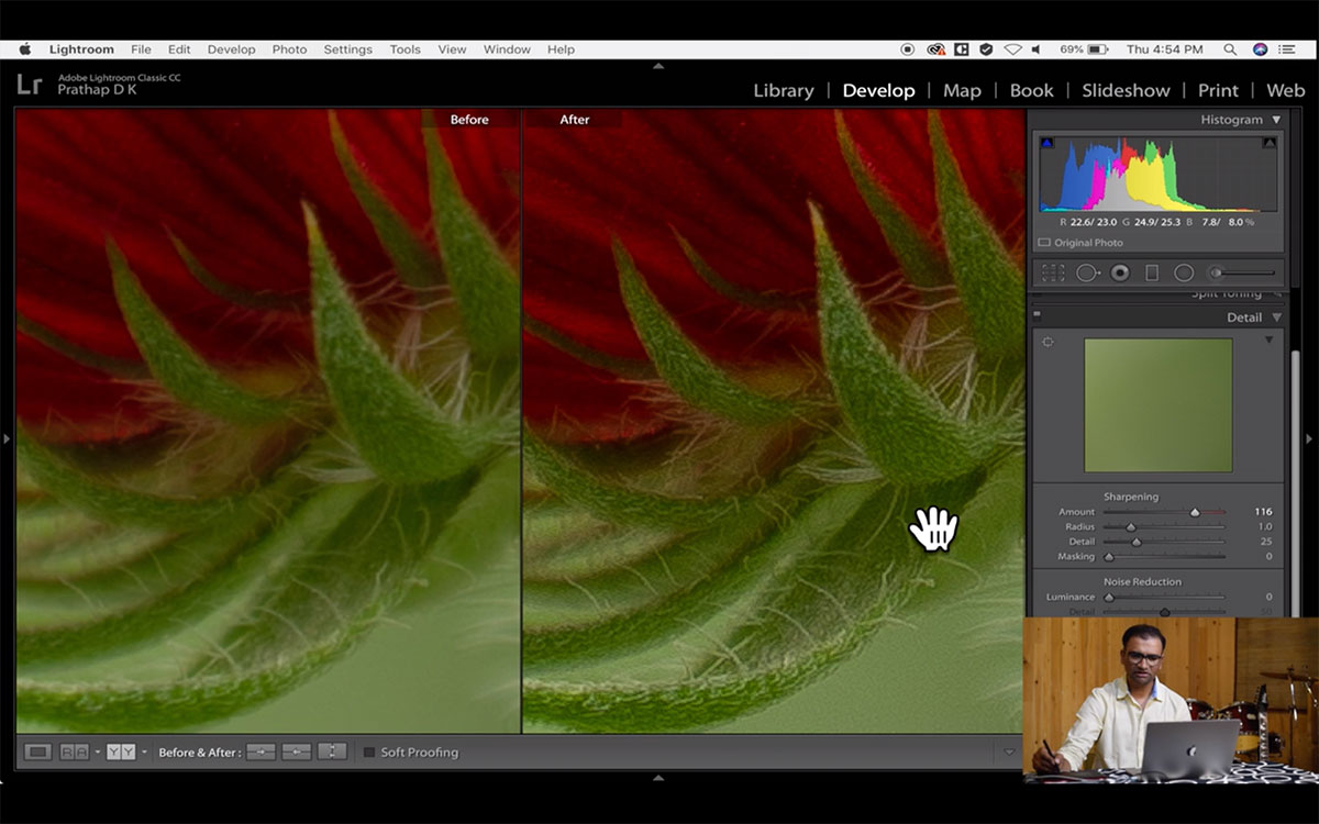 Post-Processing Video Course For Nature Photographers Using