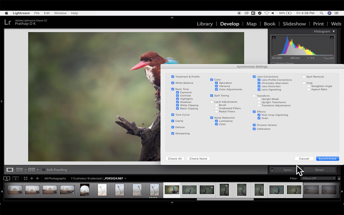Post-Processing Video Course For Nature Photographers Using Adobe
