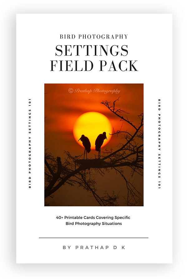 Bird Photography Settings Field Pack. Bird Photography field tips and techniques by Prathap D K